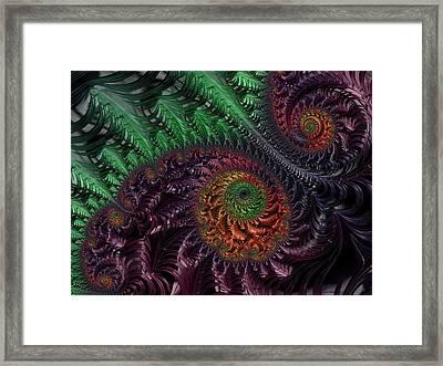 Peacock's Eye Framed Print