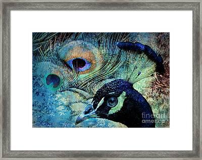 Peacocky Framed Print