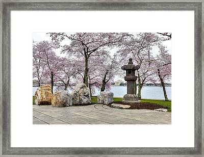 Peak-a-boo Framed Print by Edward Kreis