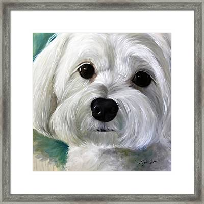 Peanut Framed Print by Mary Sparrow