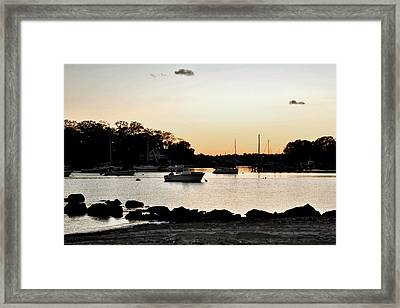 Pear Tree Point Framed Print by Laura DAddona