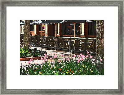 Pearl Street Mall Framed Print by Colleen Coccia