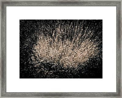 Framed Print featuring the photograph Boundless Joy by Tom Vaughan
