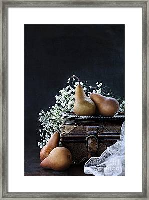 Framed Print featuring the photograph Pears And Baby's Breath by Stephanie Frey