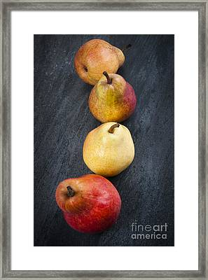 Pears From Above Framed Print by Elena Elisseeva