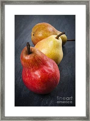 Pears Still Life Framed Print by Elena Elisseeva
