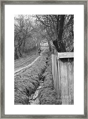 Peasant Man On A Muddy Road Framed Print by Gabriela Insuratelu