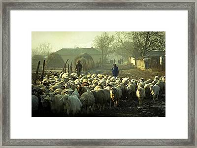 Peasants And Herd On The Village Path Framed Print