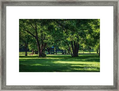Pecan Grove In Summer Framed Print by Tamyra Ayles