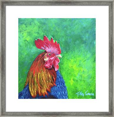 Morning Rooster Framed Print by T Fry-Green