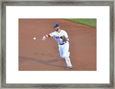 Pedroia Framed Print by Judd Nathan