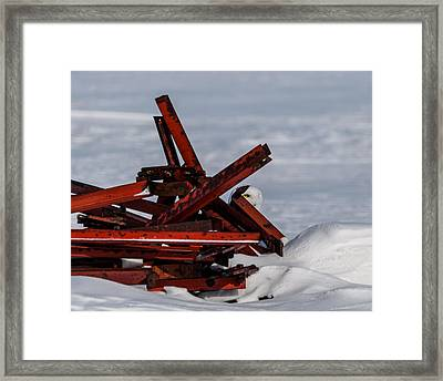 Framed Print featuring the photograph Peek-a-boo by Dan Traun