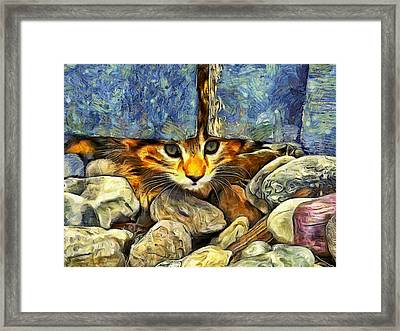 Peek A Boo Framed Print by Mark Kiver