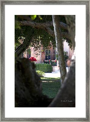 Framed Print featuring the photograph Peeking At The Mansion by John Knapko