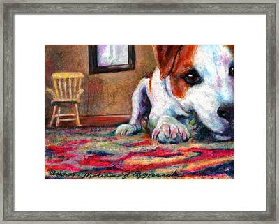 Peeking Piper Framed Print by Melissa J Szymanski