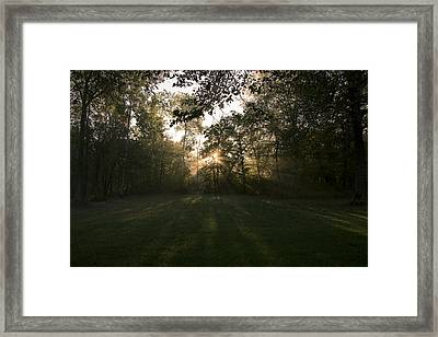 Framed Print featuring the photograph Peeking Through by Annette Berglund