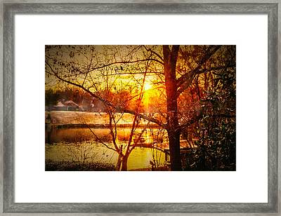 Peeking Through - Lake Sunrise Framed Print by Barry Jones