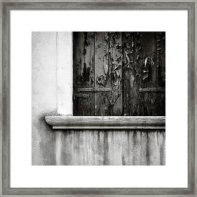 Peeling Framed Print by Dave Bowman