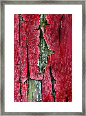 Peeling Paint Abstract Vertical Framed Print by Lisa Wooten