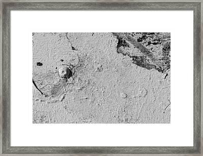 Peeling White Paint Framed Print by Robert Ullmann