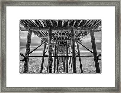 Framed Print featuring the photograph Peering From Below by Wade Courtney