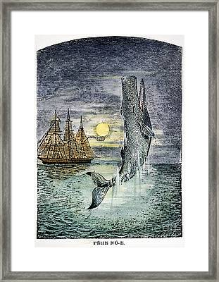 Pehe Nu-e: Moby Dick Framed Print by Granger