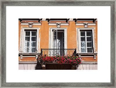 Pelargonium Peltatum Flowers On Balcony  Framed Print