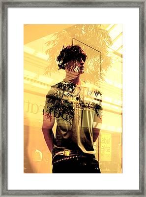Pelha Framed Print by Jez C Self