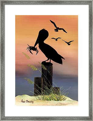 Pelican At Sunset Framed Print by Anne Beverley-Stamps
