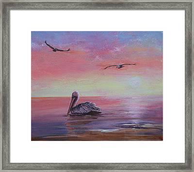 Pelican Bay Framed Print