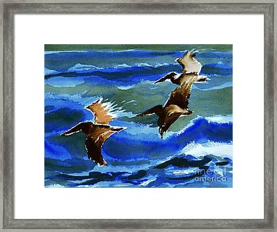 Pelican Flight  10-15-15 Framed Print by Julianne Felton