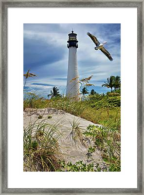 Pelican Flying Over Cape Florida Lighthouse Framed Print