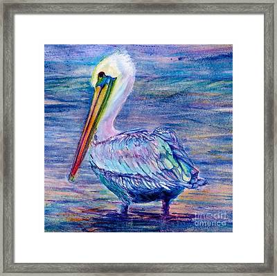 Pelican Gaze Framed Print
