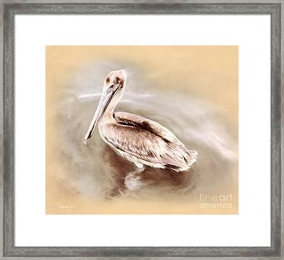 Pelican Gold Framed Print by Korrine Holt
