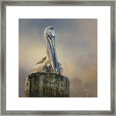 Pelican In Paradise Squared Framed Print by TK Goforth