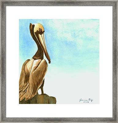 Pelican Framed Print by Jeanne Kay Juhos