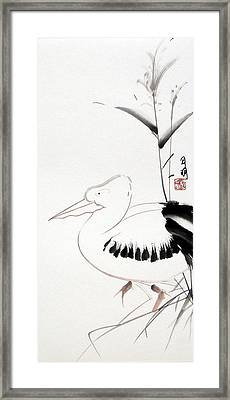 Pelican Framed Print by Ming Yeung