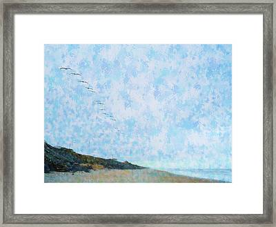 Pelican Mission Framed Print