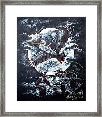 Pelican Moon Framed Print