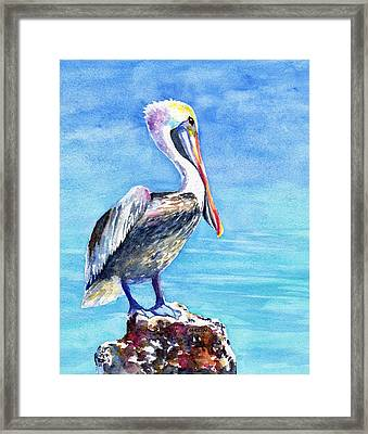 Pelican On A Post  Framed Print