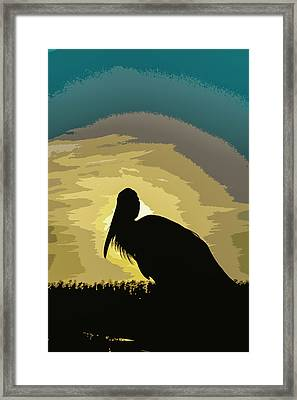 Pelican Paint Framed Print