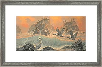 Pelican Paradise Framed Print by Marte Thompson