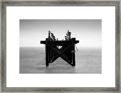 Framed Print featuring the photograph Pelican Pier - Pass Christian - Mississippi by Jason Politte