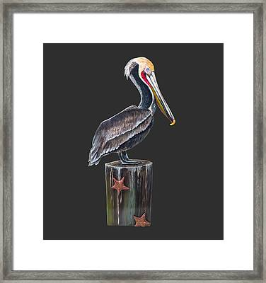Pelican Standing On A Piling Framed Print