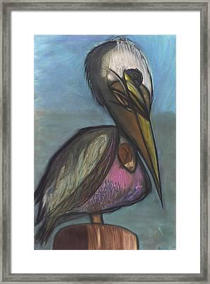 Pelican Framed Print by Stu Hanson