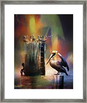 Pelican Ways Framed Print