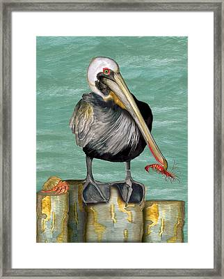Framed Print featuring the painting Pelican With Shrimp by Anne Beverley-Stamps