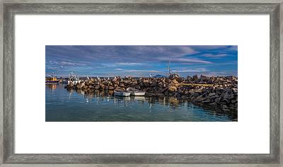 Pelicans At Eden Wharf Framed Print