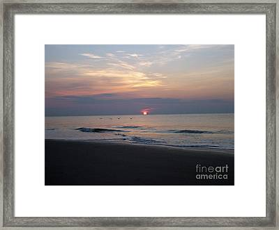 Pelicans At Sunrise On Tybee  Framed Print