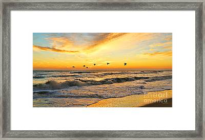 Pelicans At Sunrise  Signed 4651b 2  Framed Print